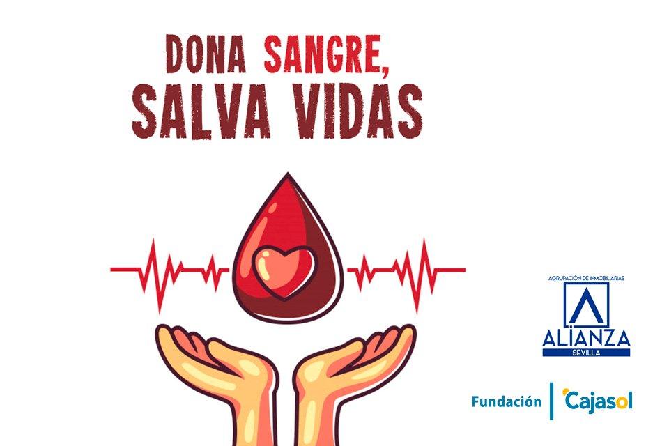 maraton-donacion-sangre-2019