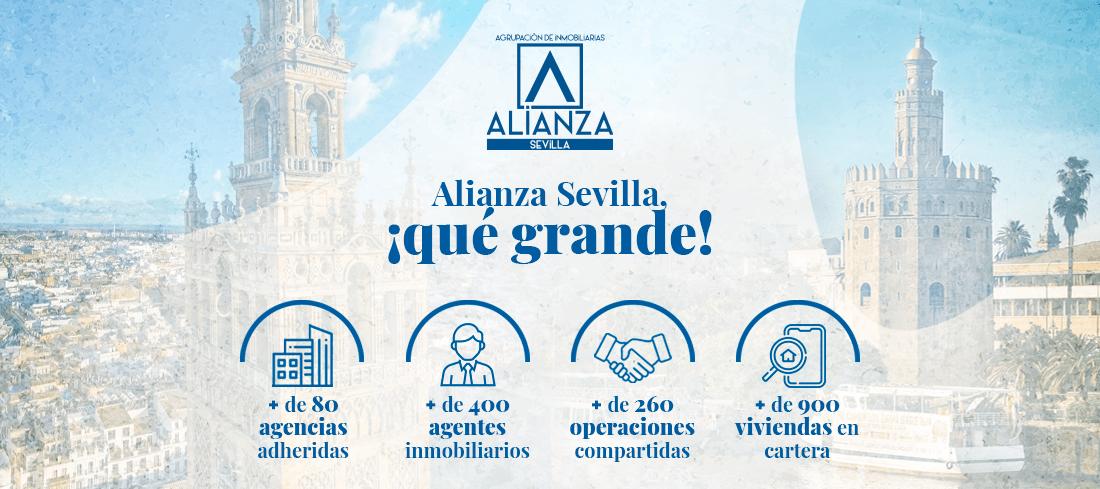 Alianza Sevilla qué grande